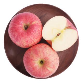 luochuanapple 洛川苹果 010 陕西红富士苹果