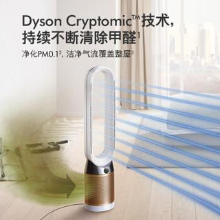dyson 戴森 TP06 空气净化风扇 净化循环二合一 整屋循环净化 黑金色