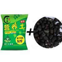 春念  陶粒1升+5斤营养土
