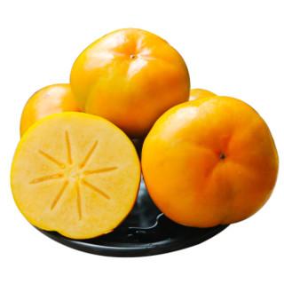 云依禾农庄 云南脆柿子  2.5斤