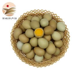七彩野鸡蛋 20枚装