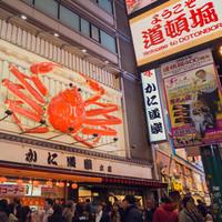 低于开航价 !郑州-日本大阪往返含税机票