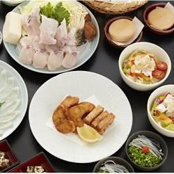 6店通兑,美食观光两不误!日本东京 とらふぐ亭 (虎河豚亭)河豚料理专门店