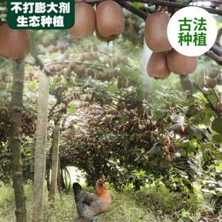 Fubaba 富爸爸 四川金艳黄心猕猴桃 20个特大果 单果110-130g
