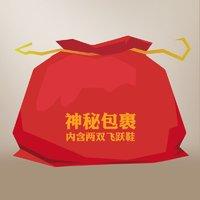 feiyue/飞跃福袋/神秘包裹 随机两双鞋