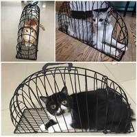 皮皮堡 洗猫笼猫吹风笼子洗猫神器防抓咬吹干猫洗澡笼袋固定猫咪用品防抓