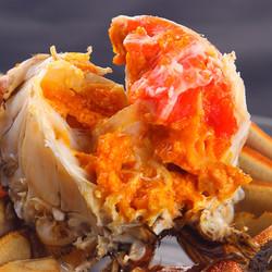 今旺阳澄湖大闸蟹协会 现货六月黄鲜活螃蟹 全母公蟹特大礼盒包邮