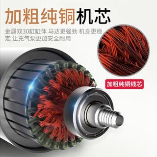 爱蚁(ianttek)车载充气泵 汽车打气泵 12v便携式打气筒 30缸预设胎压数显 汽车用品 AY-8304