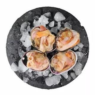 纯色本味 冷冻丹东天鹅蛋(紫石房蛤) 450g *24件