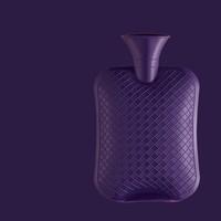热水袋 紫色 2L 送布套