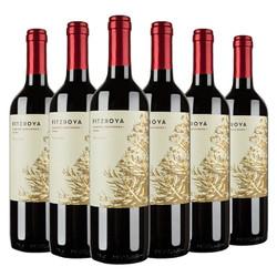 Concha y Toro 干露 费洛雅赤霞珠 西拉干红葡萄酒 750ml*6瓶 *3件