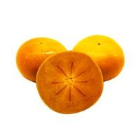 馋果人 脆甜硬柿子 10斤