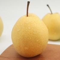 XIANPOCKET 鲜口袋 砀山酥梨 带箱10斤