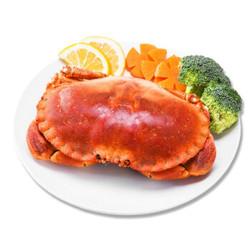 鲜旅奇缘 熟冻面包蟹 600-800g *3件