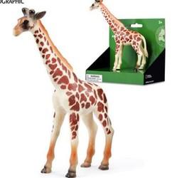 国家地理正版 野生动物模型仿真长颈鹿大象熊猫狮子老虎玩具摆件 多款可选