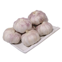沃圣优 紫红皮干大蒜 5斤