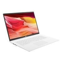 LG gram 17.3英寸笔记本电脑(i5-8265U、8G、256G、2K、雷电3、1340g)