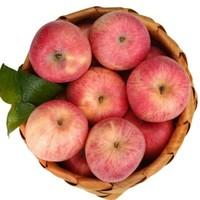 韩塬金太阳 陕西红富士苹果 带箱10斤