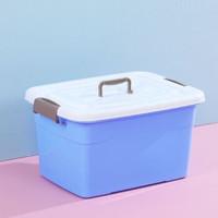 vieruodis 塑料储物箱