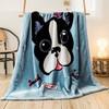 素风家纺 卡通大版花双层拉舍尔毛毯 150*200cm 4斤