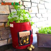 儿童土豆胡萝卜种植盆 阳台小菜园花盆幼儿园 40升酒红20元包邮