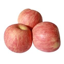 恬果惠 红富士苹果 净重10斤 70-75mm