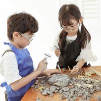 wanmole 玩模乐 恐龙化石考古挖掘玩具手工创意DIY礼物拼装