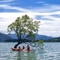 西中东线全景!新西兰南岛8天7晚跟团游(皇后镇出发)