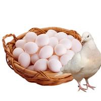 芮瑞 农家散养新鲜鸽子蛋 30枚装