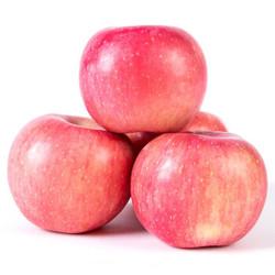 稷都 陕西红富士苹果 10斤装(单果75-80mm)