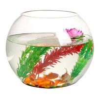 鱼麒麟 水族箱 玻璃鱼缸 20*20*16cm