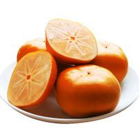 蔓花生 脆柿子 礼盒 10斤装