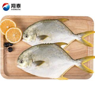 翔泰 冷冻无公害金鲳鱼 700g 2条
