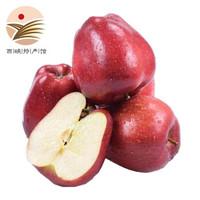 静益乐源 甘肃天水花牛苹果 国产蛇果 2.5斤 *4件