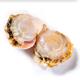海猛 渤海扇贝肉 500g (40-60个) *3件 49元包邮(需用券)