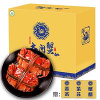 京东PLUS会员 : 蟹灵阁大闸蟹 鲜活螃蟹河蟹公母蟹 公4.0-3.5两 母3.0-2.5两 10只