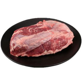 Tender Plus 天谱乐食 天谱乐食 澳洲原切M3牛腱肉 1kg 安格斯谷饲270天 牛肉生鲜