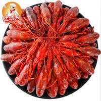 红功夫 麻辣小龙虾 4-6钱 35-50只 净虾1.8kg