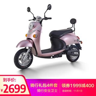 Yadea 雅迪 YD600DQT-B 1000080 轻便电动车