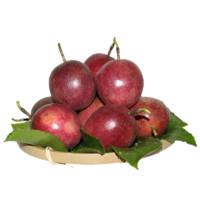 双品 百香果 中果 5斤