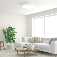 Yeelight 智能LED吸顶灯 320mm  纯白款