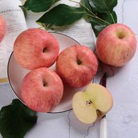 佑嘉木 烟台红富士苹果 果径80-85 5斤装