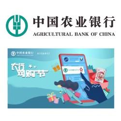 农业银行 双11双12网购节