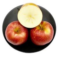 果耶 大凉山糖心丑苹果 净果4.4斤 中果70-80mm