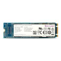 UNIC MEMORY 紫光存储 P100 固态硬盘  512GB