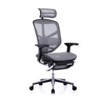 Ergonor 保友 精英网椅电脑椅 标配版+躺舒宝+笔电架