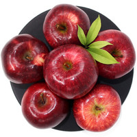 生鲜猫 甘肃花牛苹果 约30颗 共10斤 中果 70-75mm