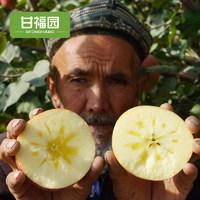 新疆阿克苏冰糖心苹果水果10斤新鲜当季红富士丑包邮