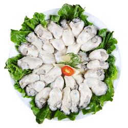 猫二郎 冷冻去壳牡蛎肉/海蛎子500g (大号约30只) *6件 119.4元(双重优惠)_京东优惠_优惠购