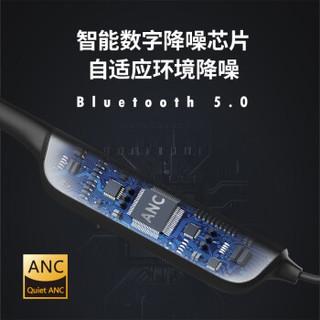 Dacom 大康  L54 ANC主动降噪耳机